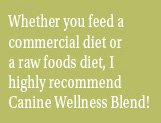 I highly recommend Canine Wellness Blend!